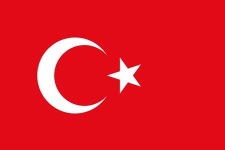 Turkiet i Fotbolls EM